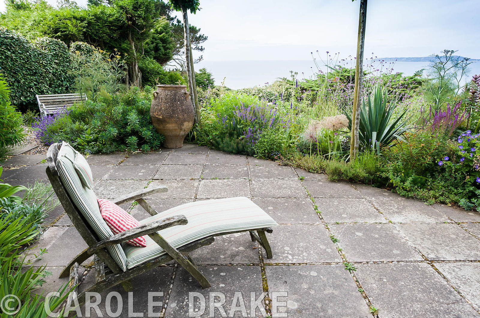 Wooden lounger on the south facing terrace with sea beyond, surrounded by euphorbias, clipped Eleagnus ebbingei, Verbena bona...