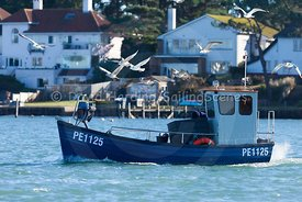Fishing boat, PE 1125