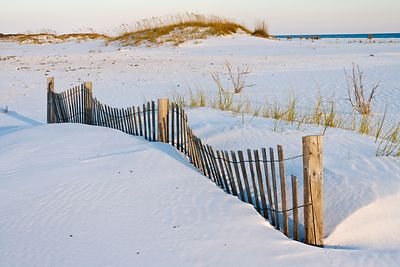 Pensacola Beach Fence