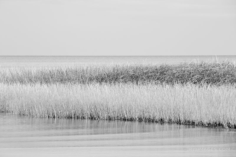 BEACH GRASSES HIGH TIDE FIRST ENCOUNTER BEACH EASTHAM CAPE COD MASSACHUSETTS BLACK AND WHITE