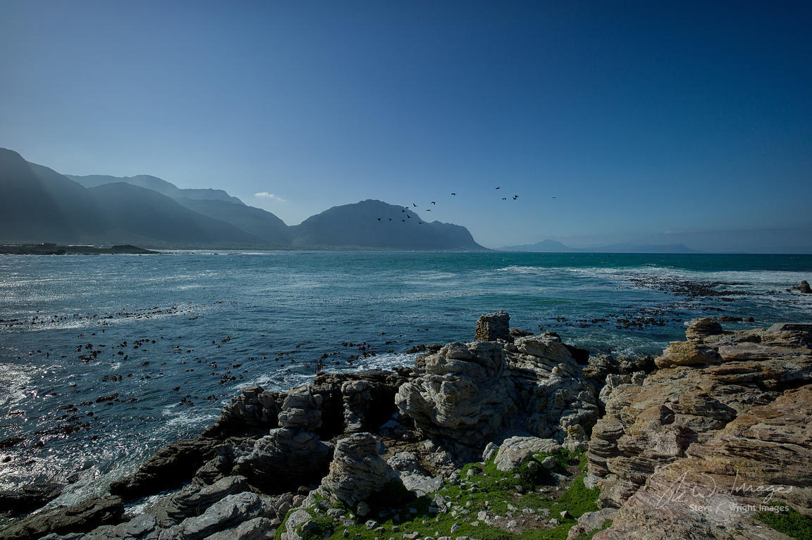 Betty's Bay - Western Cape, South Africa