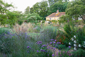 The garden at Broughton is dominated by bold clumps of grasses including Calamagrostis x acutiflora 'Karl Foerster' and Molin...