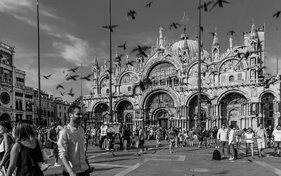 Flying pigeons over San Marco Square