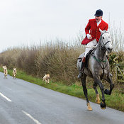 The Cottesmore Hunt at Pickwell Manor 21/12