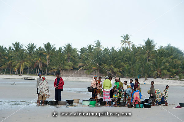 People selling fish on the beach, Vilanculos, Mozambique