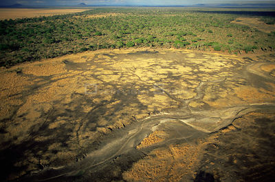 Aerial view of dried river bed, Katavi National Park, Tanzania