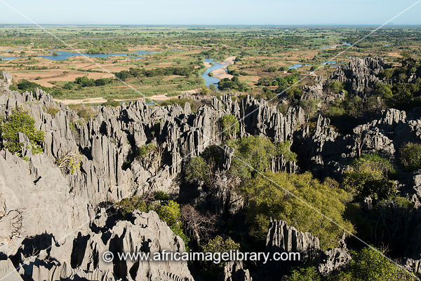 Tsingy of the Ankarana massif, Madagascar