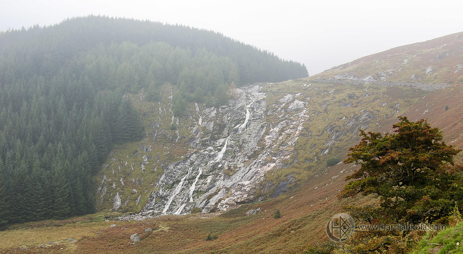 Ireland - Wicklow (Glenmacnass Waterfall III)