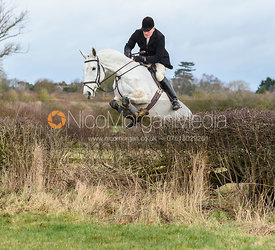 David Applewhite jumping a hedge at Eaton Grange. The Belvoir Hunt at Eaton Grange 7/2