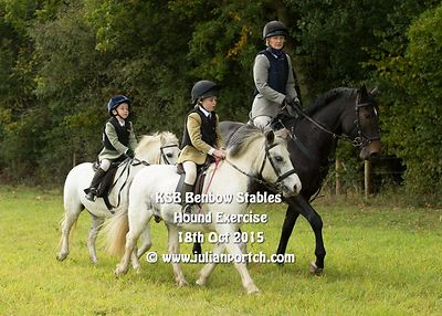 2015-10-18 KSB Benbow Stables Hound Exercise