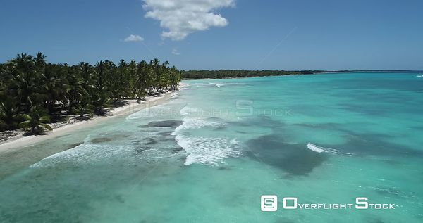 Caribbean beach and palm trees. Low altitude flight backward over the beach . Saona Island, Dominican Republic