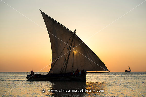 Traditional Swahili dhow at sunset, Zanzibar, Tanzania