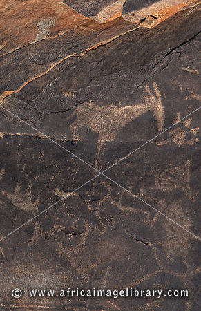 Ancient San rock engravings, Riemvasmaak, Northern Cape, South Africa