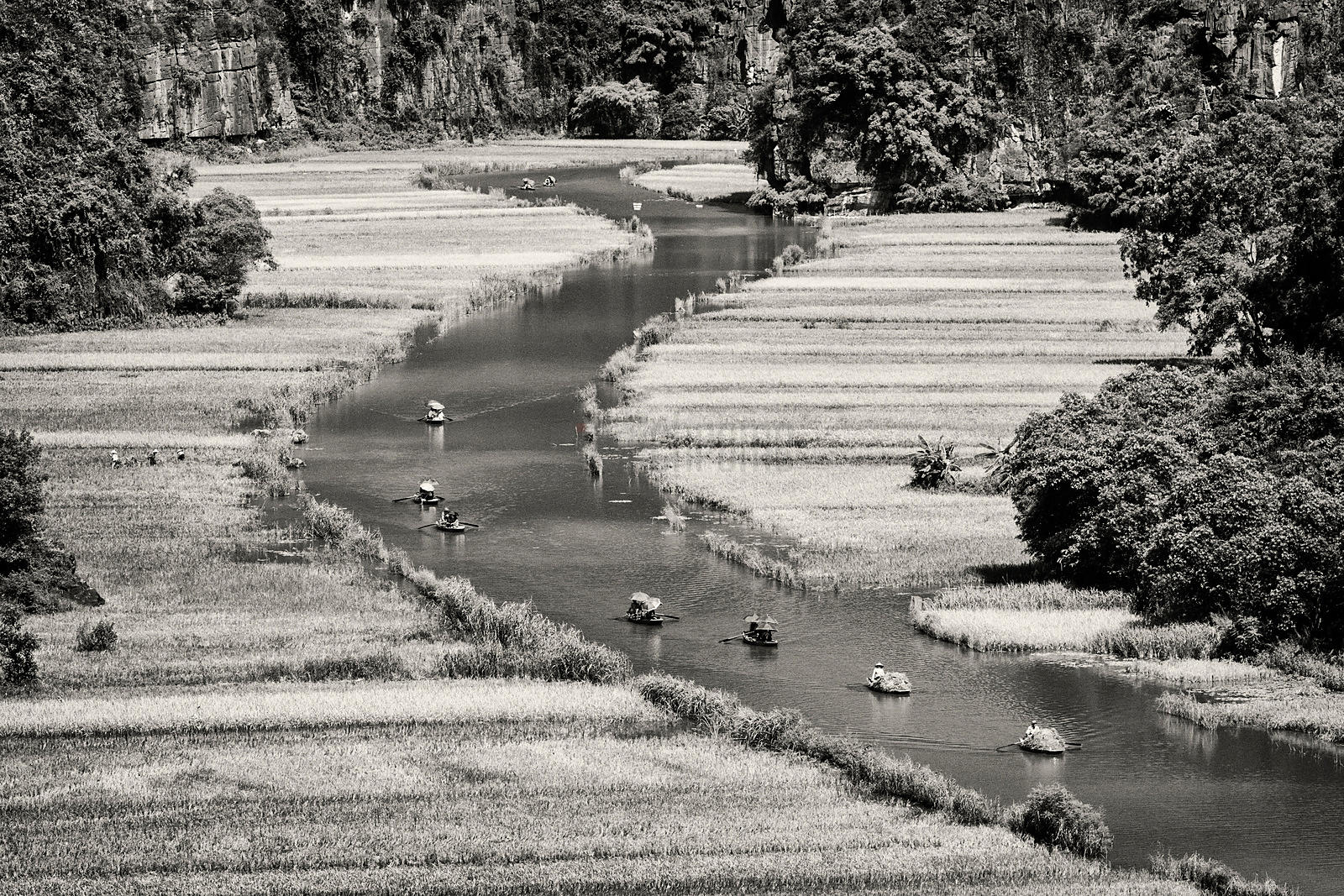 Harvested Rice and Tourists Coming Down a Channel in the Pice Paddies