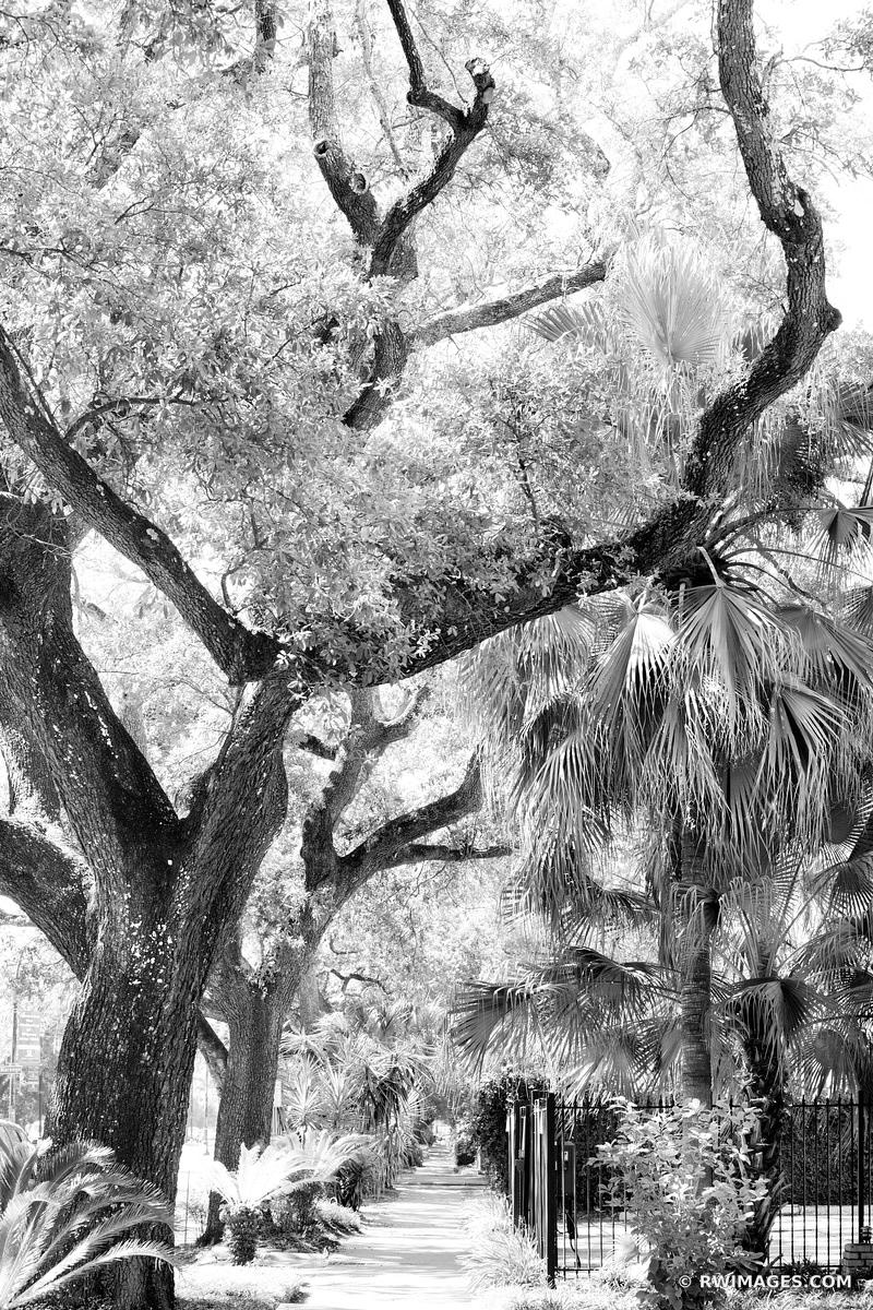 STREET GARDEN DISTRICT NEW ORLEANS LOUISIANA BLACK AND WHITE VERTICAL