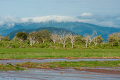 Voi river in flood in front of Taita Hills, Tsavo East National Park, Kenya