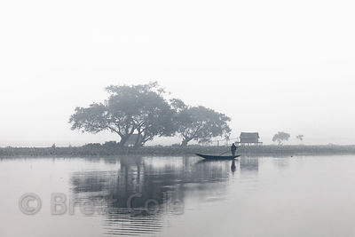 An idyllic, pastoral scene with a large tree, fishing hut, and boat on a foggy morning, East Kolkata wetlands near Chingrihata, Kolkata, India.