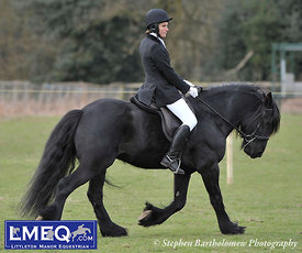 LMEQ Combined Training [22-03-2015] Dressage 1st 2 Competitors Only