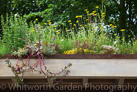 The Rain Chain sustainable garden at RHS Hampton Court Flower Show. Designer: Wendy Allen. © Rob Whitworth