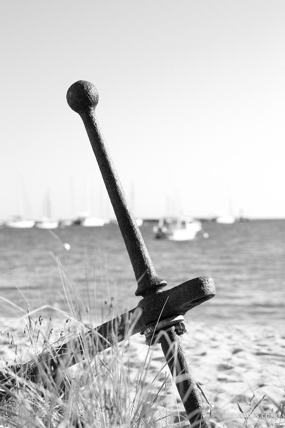 OLD ANCHOR VINEYARD HAVEN MARTHAS VINEYARD BLACK AND WHITE