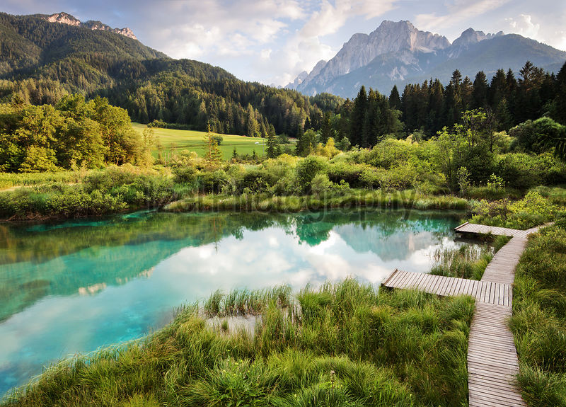 Pools of Zelenci Slovenia - Landscape Photography