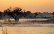 Zambezi river above Victoria Falls at sunrise , Victoria Falls National Park, Zimbabwe