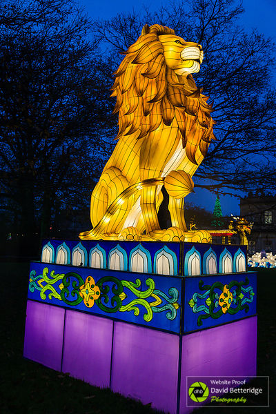 Longleat_Festival_of_Light-8