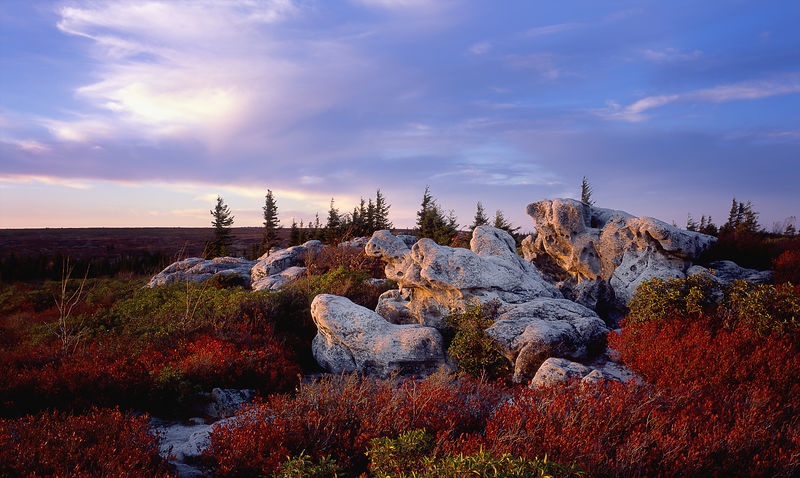002-Blue_Ridge_D105080_Dolly_Sods_in_Fall_-_Preview
