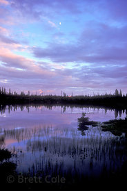 Sunset over an unnamed lake in the High Plateau, Caribou Country, British Columbia