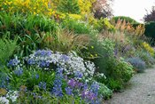 Double herbaceous borders are a colourful mix of herbaceous perennials and grasses including Calamagrostis 'Karl Foerster', S...