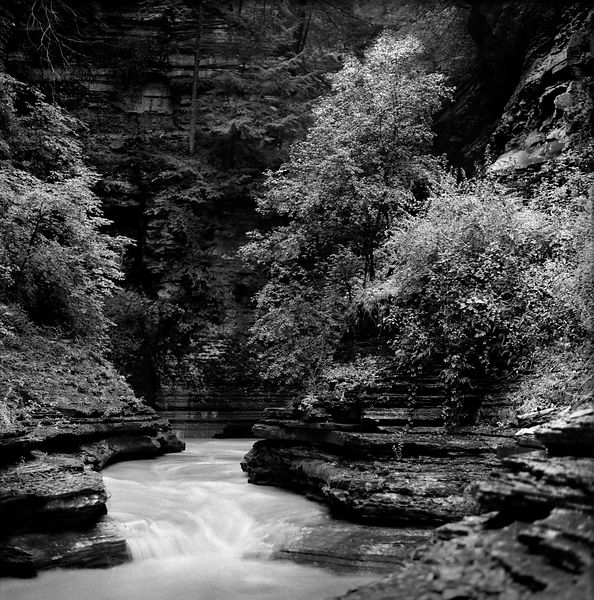 023-Eastern_Landscapes_P094011_Canyon_of_Watkins_Glen_-_Preview