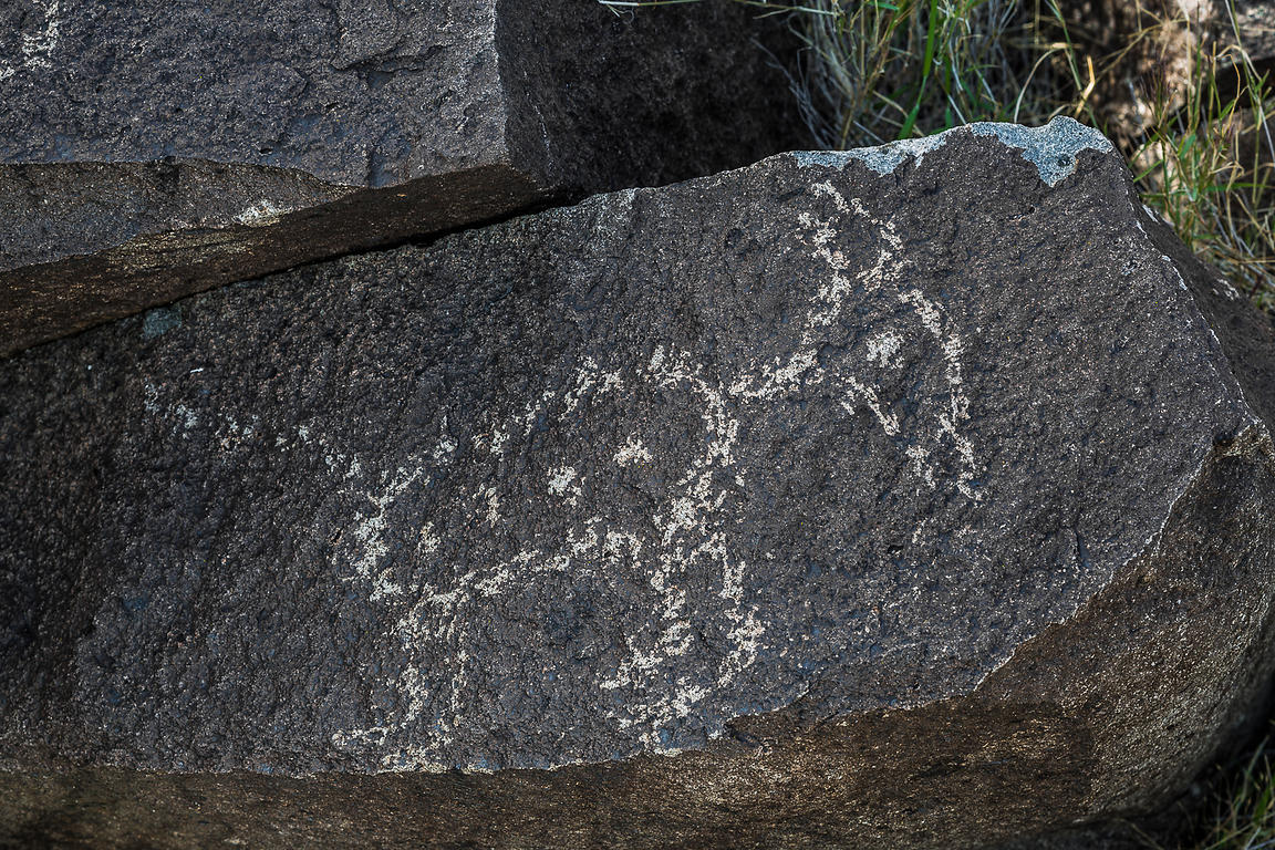Rock Art Depicting Mammal at Three Rivers Petroglyph Site