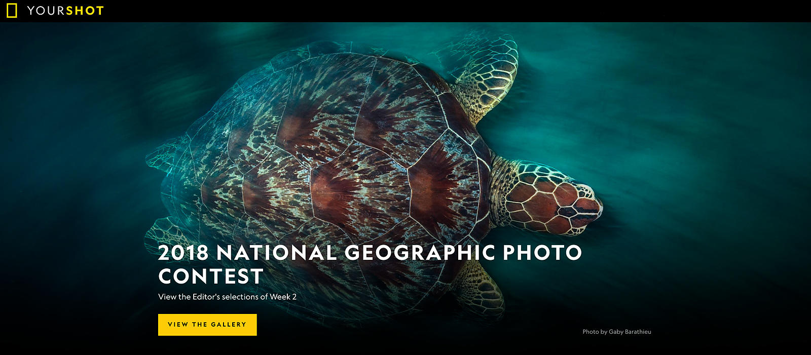 2018 National Geographic Photo contest
