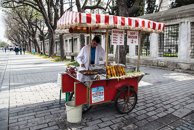 Man selling roasted chestnuts, Istanbul