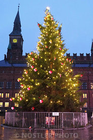 The Copenhagen Christmas tree