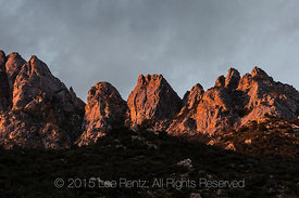 Morning Light on New Mexico's Organ Mountains Viewed from Aguirre Spring Campground