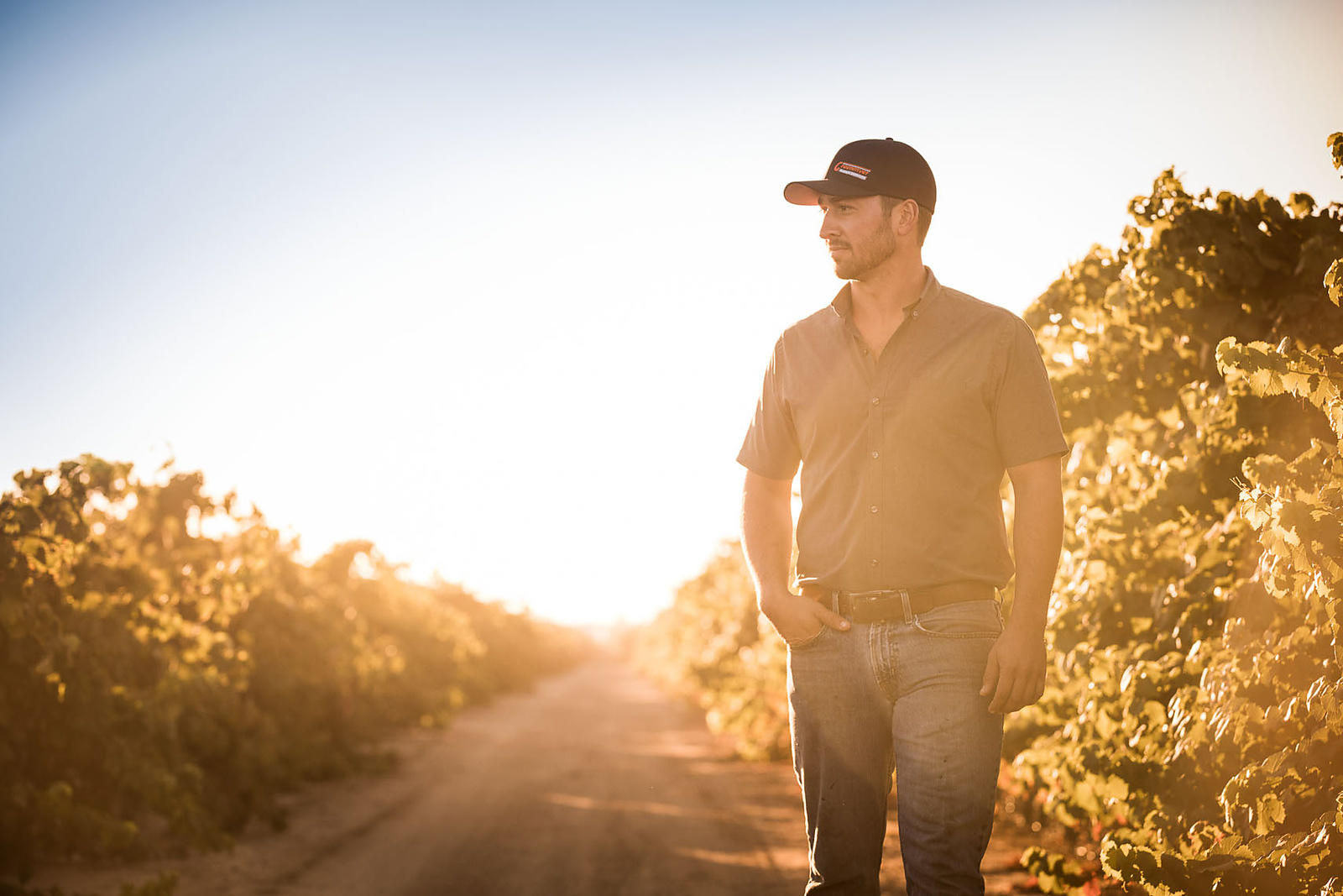 Corporate, agricultural and industrial lifestyle photoshoot for Lodi winery by Jason Tinacci