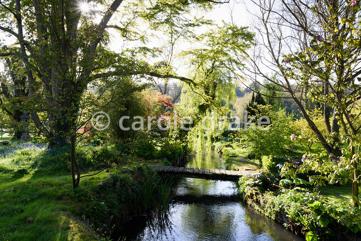 A bridge crosses a tributary of the River Avon in the Japanese garden at Heale House, Middle Woodford, Wiltshire