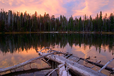 Reflections in Jack Lake at sunset, Mount Jefferson Wilderness, Oregon Cascades.