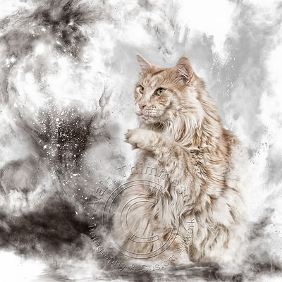 Art-DigitalAlain-Thimmesch-Chat-40