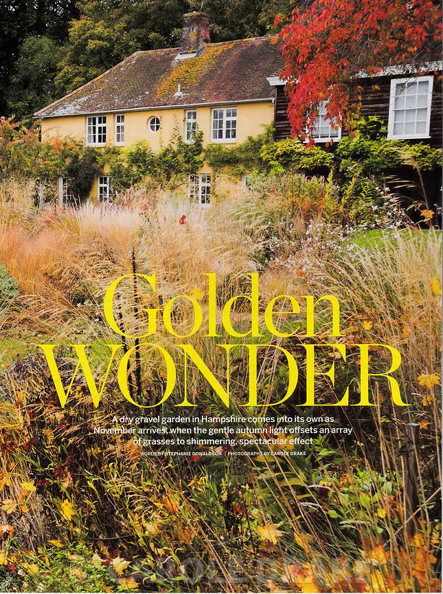 The Buildings, Country Living, November 2013