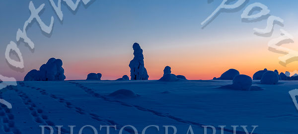 Lone Tykkylumi Silhouettes at Sunsets Blue Moment in Panorama