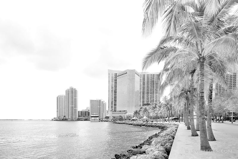 BAYFRONT PARK WATERFRONT DOWNTOWN MIAMI FLORIDA BLACK AND WHITE
