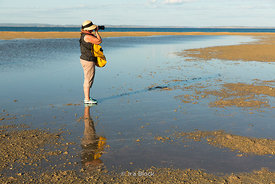 Tourist on an exposed sandbar near Montgomery Reef in Australia's Kimberley.