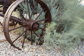 Old iron wheel in Silver Reef, a ghost town in Washington County, Utah.