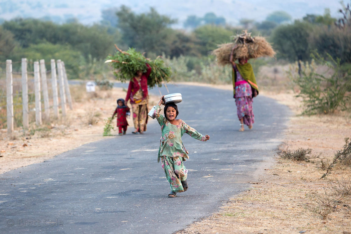 A family carries goat fodder along a country road, Kharekhari village, Rajasthan, India