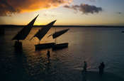 Dhows at sunset, Inhambane, Mozambique