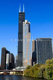 Chicago Cityscape with Sears-Willis Tower