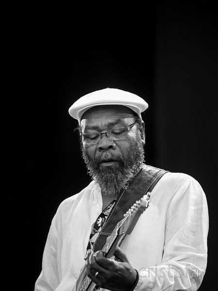 Clinton Fearon - WOMAD 2014