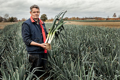 Dutch Leek Growers Nederlandse prei teler